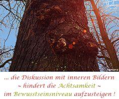 ... die Diskussion mit inneren Bildern ~ hindert die #Achtsamkeit ~ im #Bewusstseinsniveau aufzusteigen !
