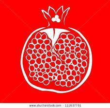 Image result for pomegranate drawing
