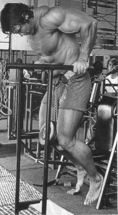 Arnold Schwarzenegger - Dips
