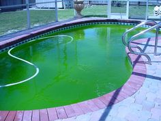 How to remove algae from pool: best pool algae killer - http://simplepooltips.com/remove-algae-pool-best-pool-algae-killer/