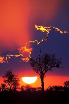 Beautiful Photography & Nature