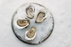 Thatch Island Oysters | Oysterology Online — Pangea Shellfish Company | Oyster and Shellfish Wholesale Food Icon Png, Food Icons, Tuna Fishing, Sea Scallops, Oysters, Island, Islands