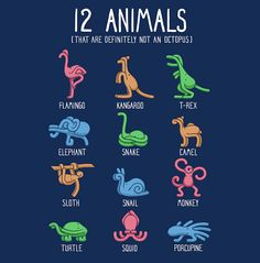 Clever T-Shirt Design Featuring 12 Animals That Are Definitely 'Not' an Octopus