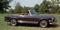 Tobacco Brown 1971 Mercedes 280 SL US Model - I'd love to drive one of these to work everyday.