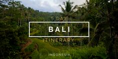Summary of my 5 day trip to Bali, Indonesia. Everything you need to you know to plan your perfect itinerary including tips, sights, and photo highlights.