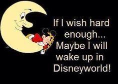 Wake up at Disney World, I'll be there soon enough @Ann Moran @Ashlie Moran @Hilliary Simmons @Kelly Moran McKinney