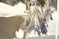 Lavender themed DIY wedding. love