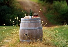 Arrange an English wine tasting experience or a vineyard tour. Our hotel vouchers include the wine tasting, winery tour & a full English breakfast for English Wine, Pliny The Elder, Wine Tasting Experience, Unique Wedding Gifts, Wine Festival, Tasting Room, Portsmouth, New England, Wines