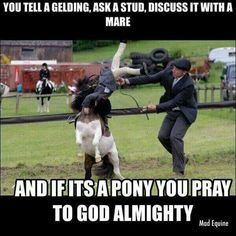 And if it's a pony you pray to god almighty