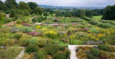 Stuart-Smith Yorkshire garden view