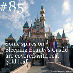 #Disney #facts