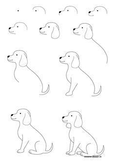 Dessiner un chien drawing for beginners, drawing for kids, dog drawing simple, learn Drawing Lessons, Drawing Techniques, Art Lessons, Doodle Drawings, Drawing Sketches, Drawing Poses, Face Sketch, Girl Sketch, Doodle Art