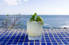 "the ""Ginger Rogers"" is a refreshing mix of mint, gin, ginger and ginger ale."