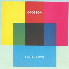 OpossomElectricHawaii600Gb020812.jpg (368×368)