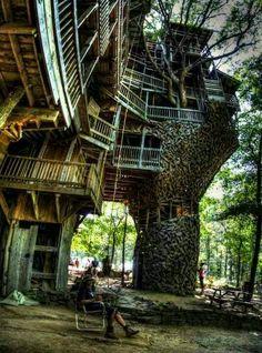 Treehouses!
