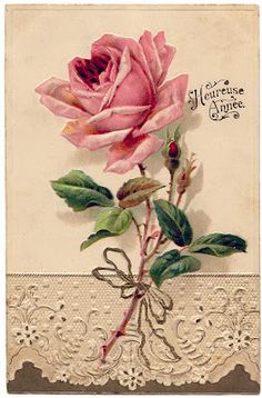 French Image – Beautiful Rose with Lace from the Graphics Fairy