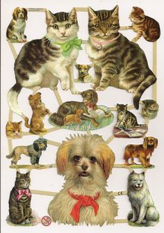 German Victorian Style Embossed Scrap Die Cut Cats Dogs A Red Bow EF7238