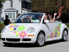 Multiple colors of daisy decals - great attention getter!