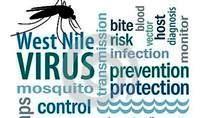 http://plazilla.com/het-west-nijl-virus
