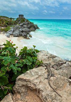 Tulum (Mexico). Ruinas posadas frente al mar turquesa y sus arenas blancas, estar aquí es maravilloso, Mi lugar favorito hasta ahora.