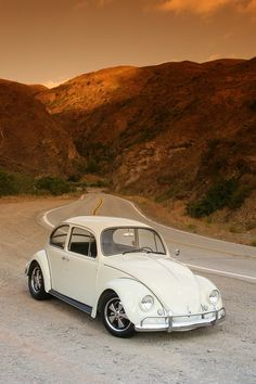 This '67 vw beetle  basically tops that charts for being one of the best car! It's cheap but, the best part is that it can run for a long time!