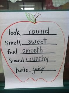 How To Produce Elementary School Much More Enjoyment Life Is Sweet.In Kindergarten: An Apple A Day. Preschool Apple Theme, Fall Preschool, Kindergarten Science, Preschool Lessons, Kindergarten Classroom, Preschool Activities, Kindergarten Apples, Preschool Apples, September Preschool
