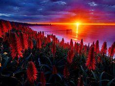 Sunset / https://www.facebook.com/photo.php?fbid=408373252533557=a.162278700476348.26283.159666184070933=3=1