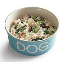 """Green with Envy"" No-Cook Doggie Stew 