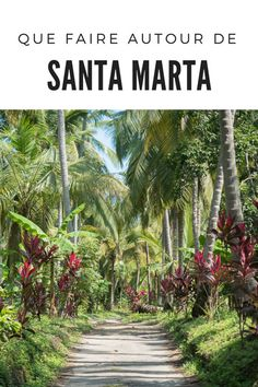 Trip To Colombia, Colombia Travel, Santa Marta, Travel List, Travel Guides, Central America, South America, Argentine, Photos Voyages
