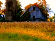Behind the Barn by Kathy Mereand, via Flickr