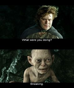 """""""What are you doing?""""   ~The Lord of the Rings: The Return of the King"""