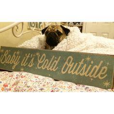 Mummy and nana have been starting to get the house nice and wintry and cosy - cos baby it's cold outside  #qtpugs #purepugspp #pug #pugs #pugsofinstagram #pugbasement #pugsproud_feature #badasspugclub #bubblebeccahat #cupcake_pug #dailydoseofpugs #eddthepug #flatnosedogsociety #gilesfriends #heyportiapickme #henrys1inamillion #itslolathepug #lolasfotw #lacyandpaws #mysquishyliciousfriends #puglife #speakpug #squishyfacecrew #thetomcoteshow #zerozeropug #curepetcancer by alfiethepug_beat