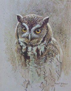 Robert Bateman SCreech Owl Study