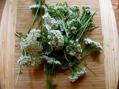 Fabulous homemade bug repellent!  For this homemade bug spray recipe you'll need:      Yarrow (either fresh or dried flowers and leaves)     Alcohol (vodka works fine)     Catnip Essential Oil     Spray bottles