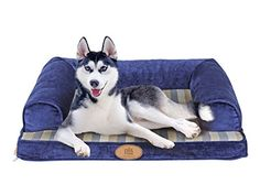 PLS Birdsong Lounger Sofa, Small, Firm Orthopedic Dog Bed, Foam Dog Bed, Dog Beds with Removable and Washable… Orthopedic Dog Bed, Dog Store, Small Sofa, Medium Dogs, Small Dog Breeds, Pet Beds, New Toys, Boston Terrier, Corgi