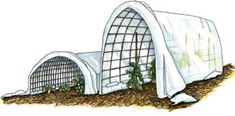 """""""Low-tunnels can add four to six weeks to the front end of your growing season (and many of them will be handy again in the fall)."""""""
