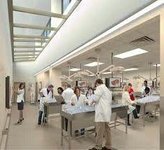 Go to medical school!!! :)