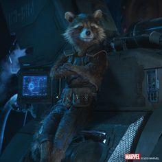 Avengers Cast, Avengers Movies, Marvel Characters, Marvel Movies, Marvel Avengers, Marvel Dc Comics, Marvel Heroes, Captain Marvel, Raccoon Art