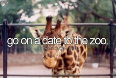 Will be done ? June 2016: St Louis Zoo (adventure bucket list i will)