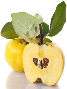 Quince Fruit was the Golden Apple in Greek Myth