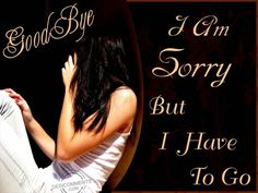 I m Sorry quotes timeline image