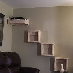 Set of Three floating cat cube shelves and a floating cat bed Floating cat shelves Floating Cat Shelves, Diy Cat Shelves, Cube Shelves, Floating Stairs, Cat Walkway, Cat Cube, Cat Stairs, Diy Cat Tree, Reclaimed Wood Shelves