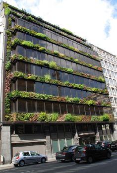 Esse edifício em Bruxelas, Bélgica, tem fachada que combina vidro e um jardim vertical projetado por Patrick Blanc, um dos pioneiros na implantação de fachadas verdes no mundo.