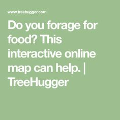 Do you forage for food? This interactive online map can help. | TreeHugger