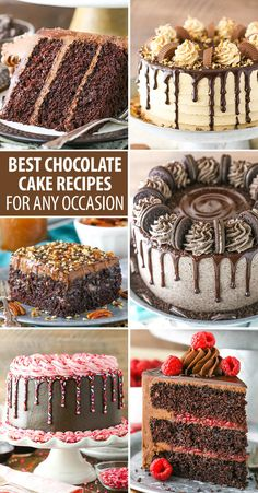 The Best Chocolate Cake Recipes for Any Occasion! Whether you're looking for an easy chocolate cake recipe, chocolate layer cake, bundt cake & more, we have the best chocolate cake recipes for you! Best Moist Chocolate Cake, Nutella Chocolate Cake, Amazing Chocolate Cake Recipe, Chocolate Desserts, Chocolate Layer Cakes, Homemade Cake Recipes, Best Cake Recipes, Recipes For Cakes, Cake Filling Recipes