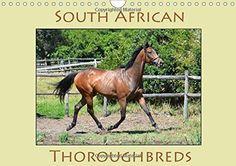 Calendar 2017, Photo Calendar, Thoroughbred, A4, Photo Wall, African, English, Horses, Landscape