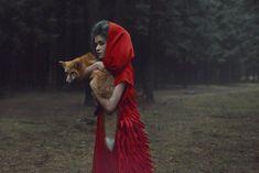 Katerina Plotnikova, fotografías increibles con animales en el bosque | La voz del muro