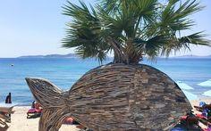 Mykonos, Greece © Christoph Bugram / Restplatzbörse Hotels, Mykonos Greece, Partys, Strand, Outdoor Decor, Paradise, Travel Advice, Island, Luxury