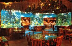 The Rainforest Café in London brings exotic and endangered environments to the forefront of your dining experience.