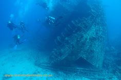 Dive sites (Red Sea): Giannis D (Sha'ab Abu Nuhas) - divers swim around the stern
